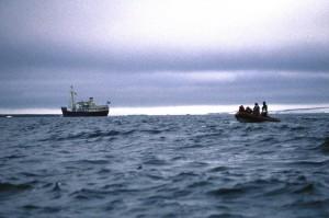 Origo, Stör Adası açıklarında demirde